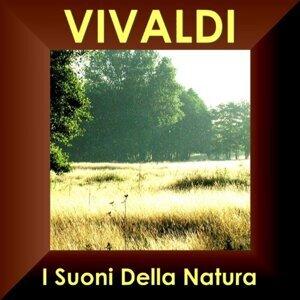I Virtuosi Dell´ Ensemble Di Venezia 歌手頭像
