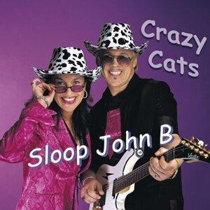 Crazy Cats 歌手頭像