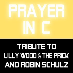 Tribute to Lilly Wood & The Prick and Robin Schulz