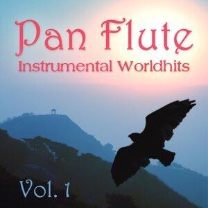 Pan Flute - Instrumental Worldhits 歌手頭像