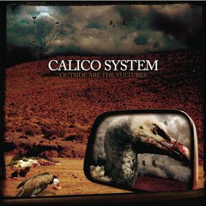 Calico System 歌手頭像