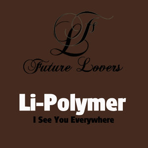 Li-Polymer