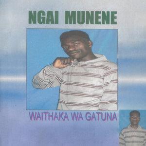 Waithaka Wa Gatuna 歌手頭像