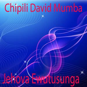 Chipili David Mumba 歌手頭像