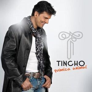 Trio Tincho 歌手頭像