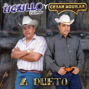 El Tigrillo Palma 歌手頭像