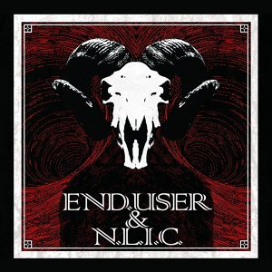 End.user, N.L.I.C. 歌手頭像
