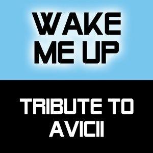 Tribute to Avicii 歌手頭像