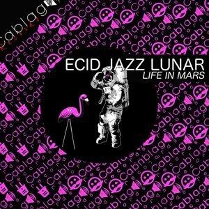 Ecid Jazz Lunar 歌手頭像