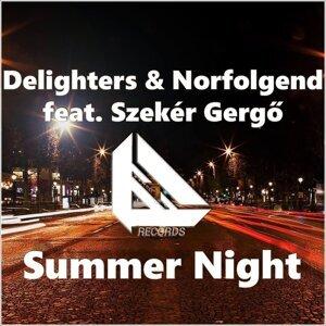 Delighters & Norfolgend feat. Szeker Gergo 歌手頭像