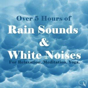 Natural Rain 歌手頭像