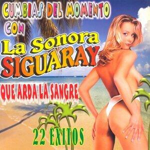 La Sonora Siguaray 歌手頭像
