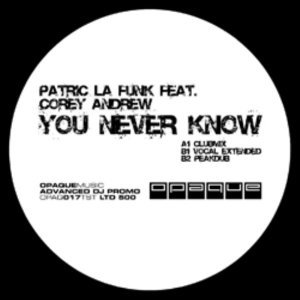 Patric la Funk feat. Corey Andrew 歌手頭像