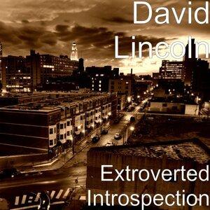 David Lincoln 歌手頭像