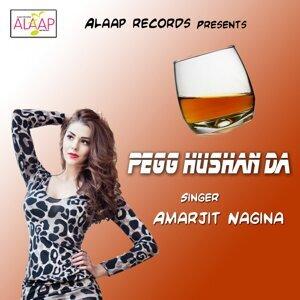 Amarjit Nagina 歌手頭像