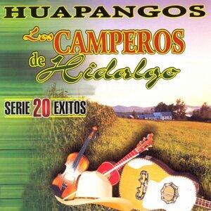 Los Camperos De Hidalgo 歌手頭像
