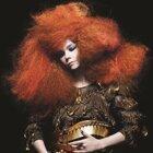 Björk (碧玉)