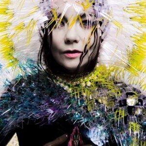 Björk (碧玉) 歌手頭像
