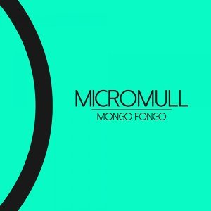 Micromull 歌手頭像