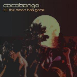 Cocobongo 歌手頭像