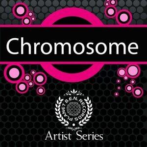 Chromosome 歌手頭像