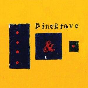 Pinegrove 歌手頭像