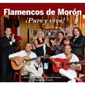 Flamencos de Morón ¡Puro y vivo! 歌手頭像