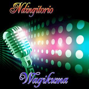 Wagikuma 歌手頭像