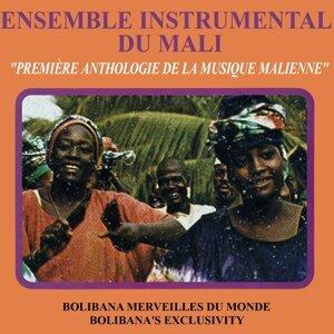 Ensemble instrumental du Mali 歌手頭像