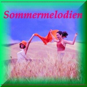 Roman Sayler Orchestra, Edelweiß Sound Orchester 歌手頭像