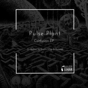 Pulse Plant 歌手頭像