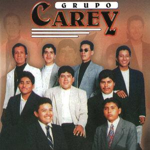 Grupo Carey 歌手頭像