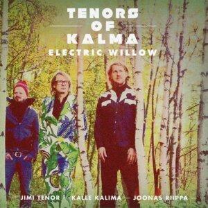 Jimi Tenor & Tenors of Kalma with Kalle Kalima & Joonas Riippa 歌手頭像