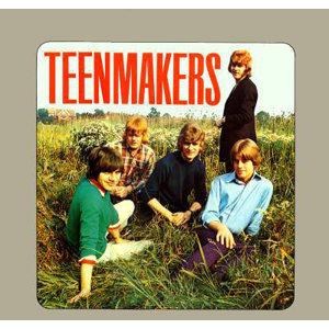 The Teenmakers 歌手頭像