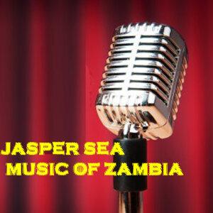 Jasper Sea 歌手頭像