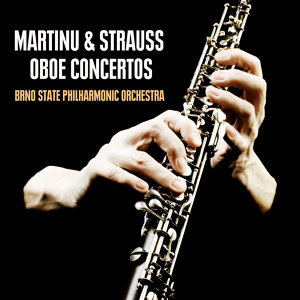 Oliver Triendl, Brno State Philharmonic Orchestra 歌手頭像