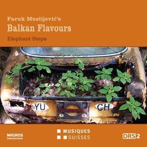 Faruk Muslijevic's Balkan Flavours アーティスト写真
