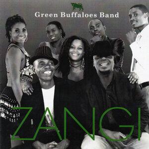 Green Buffaloes Band 歌手頭像