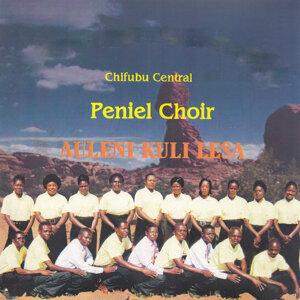 Chifubu Central Pemiel Choir 歌手頭像