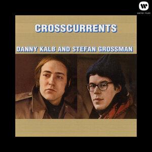 Danny Kalb & Stefan Grossman 歌手頭像