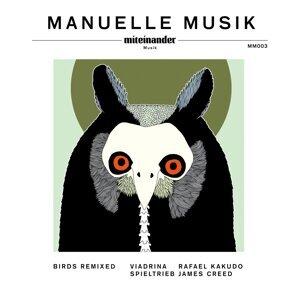 Manuelle Musik アーティスト写真