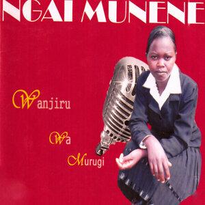 Wanjiru Wa Murugi 歌手頭像