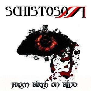 Schistosoma 歌手頭像