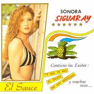 Sonora Siguaray 歌手頭像