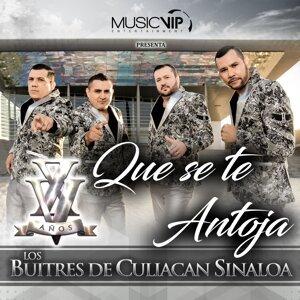 Los Buitres De Culiacán Sinaloa 歌手頭像