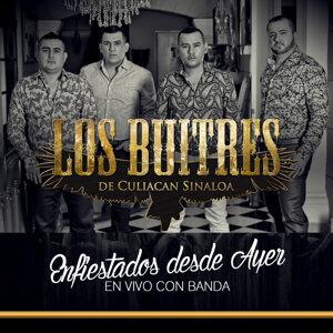 Los Buitres De Culiacán Sinaloa