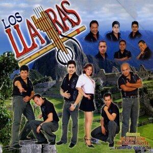 Llayras 歌手頭像