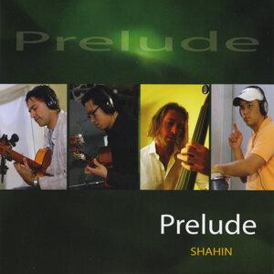 Shahin 歌手頭像