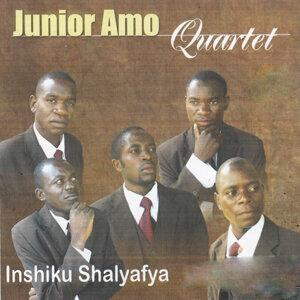 Junior Amo Quartet 歌手頭像