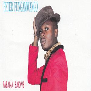 Peter Fungamwango 歌手頭像